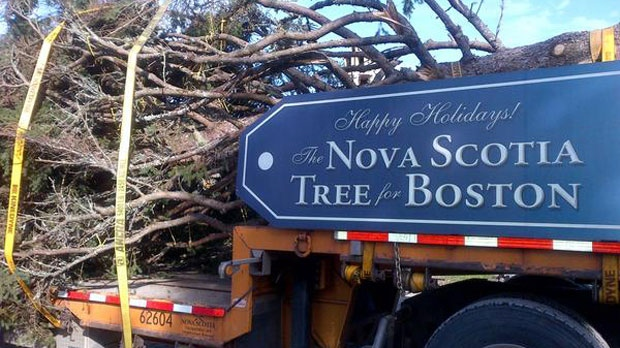 The Nova Scotia Tree for Boston leaves its home in Jordan Bay, Shelburne County on Tuesday, November 13. (Photo Courtesy of @TreeforBoston)