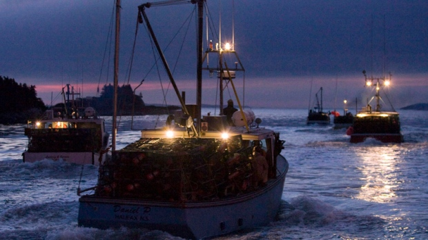 Nova Scotia fishery should focus on sustainability