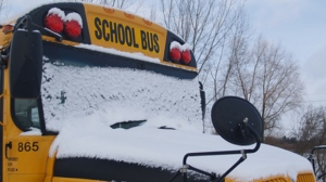 There are a number of closures and cancellations today.