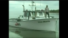 Fishermen returned to the waters of Tabusintac, N.B. on Tuesday, three days after three young lobster fishermen were lost at sea.