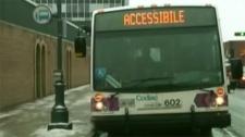 codiac transpo, moncton transit