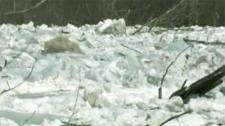 ice floe, ice jam, nashwaak river
