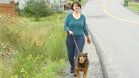 Francesca Rogier walks Brindi the dog in this image from CTV archives.  Brindi could be ordered euthanized next month.