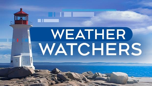 CTV Atlantic: Cindy Days forecast for Nov. 24 | CTV
