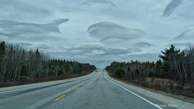 On Tuesday, Joan Marie Baltzer of New Ross, spotted dolphins....in the sky!