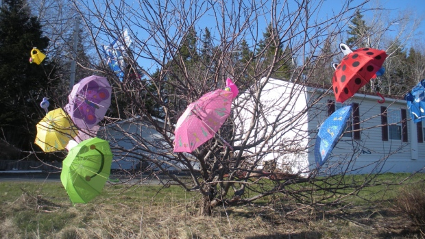 Last month, Donna Belanger, from Caribou NS,  hung umbrellas in a tree to symbolize April showers.  Luckily, they were opened outside!