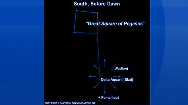 Here's where to look for the Delta Aquarid Meteor Shower!