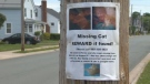 Police in Truro say they have noticed an increased number of missing cat flyers in the community.