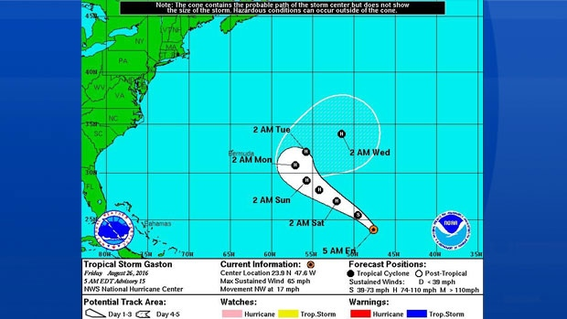 NOAA's 5 day computer projection for TS Gaston.
