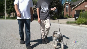 The uncle of an at-risk 14-year-old boy says government red tape is preventing them from raising him in Ontario.