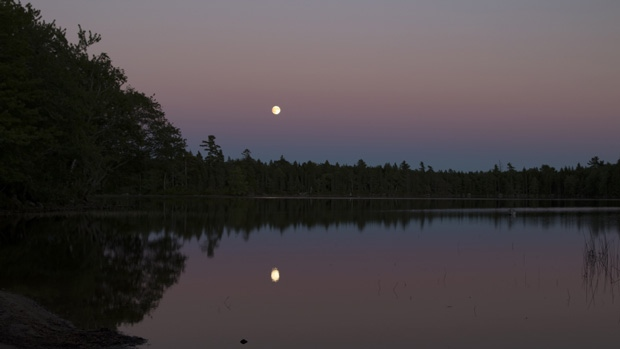 Bruce Hamilton took this awesome photo of the Harvest Moon last evening over Gibson Lake, NS