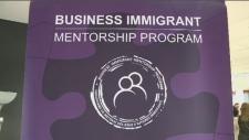 Immigrant mentorship program