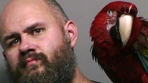 "This booking photo provided by the Washington County Sheriff's office taken in Hillsboro, Ore., Thursday, Dec. 1, 2016, shows Craig Buckner with his macaw, named ""Bird."" (Multnomah County Sheriff's Office via AP)"