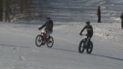 Two snow bicyclists hit the slopes of Crabbe Mountain on Sunday, Jan. 15, 2017.