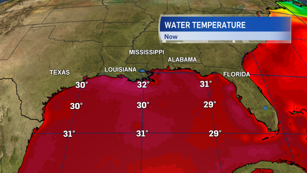 Gulf of Mexico sea surface temperatures