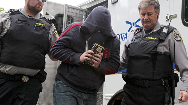 Delisle pleads guilty to espionage-related charges